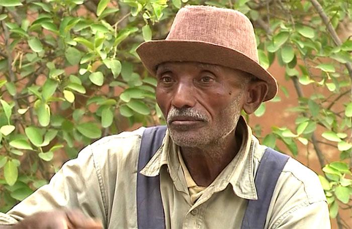 shabait3 Eritrea: Qualities That Make Successful Eritrean Farmer